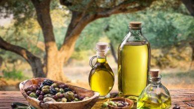 زيت الزيتون التونسي يتوج بالذهب في إيطاليا
