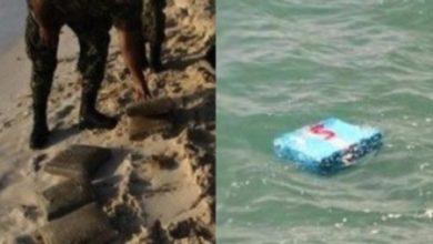 نابل أمواج البحر تلفظ عشرات الكيلوغرامات من ''الزطلة''