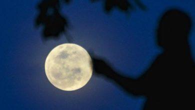 يوم الجمعة سماء تونس ستشهد ظاهرة فلكية غريبة ليلا