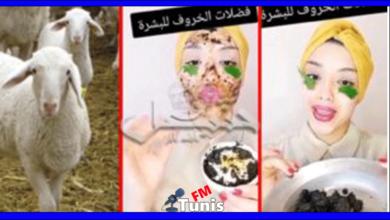 """تونسية تنصح النساء """"بفضلات"""" الخرفان لتصفية البشرة..(فيديو)"""