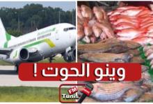 إختفاء هبة الأسماك المقدمة من موريتانيا